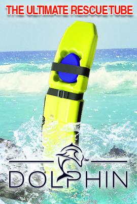 dolphin banner1